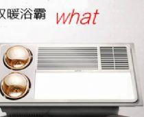 什么是双暖浴霸?哪个牌子的双暖浴霸好用?